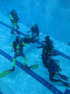 laboratorio-subacquea-scientifica-2015-piscina-IMG05