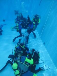 laboratorio-subacquea-scientifica-2015-piscina-IMG09