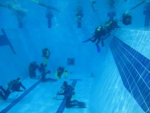 laboratorio-subacquea-scientifica-2015-piscina-IMG21