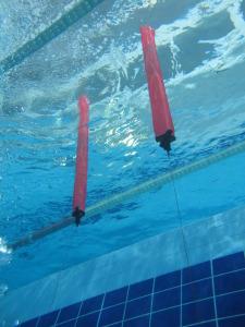 laboratorio-subacquea-scientifica-2015-piscina-IMG67