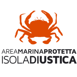 AMP USTICA logo
